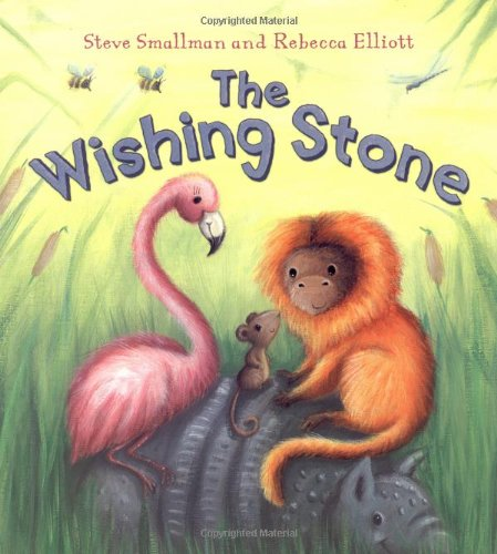 9781848354364: The Wishing Stone (Storytime)