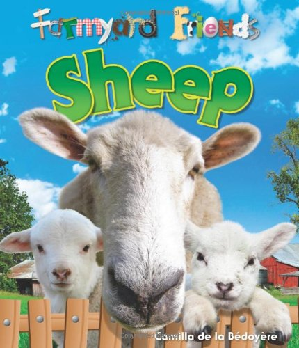9781848354494: Sheep (Farmyard Friends)