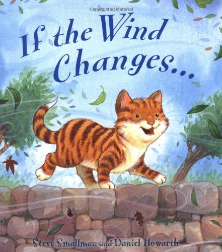 9781848355422: If the Wind Changes (Storytime)