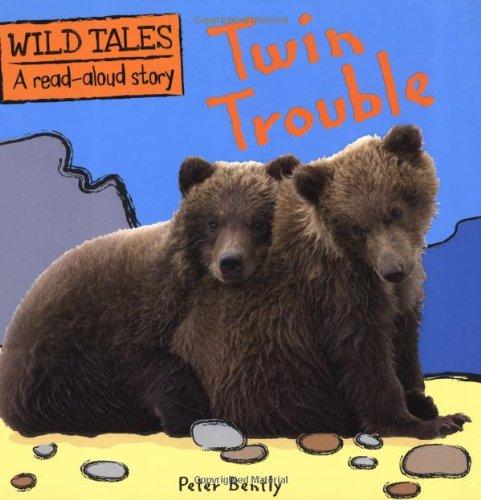 9781848356450: Twin Trouble (Wild Tales)