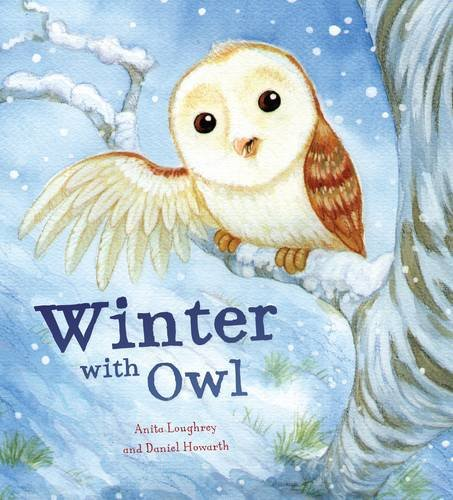 9781848358157: Animal Seasons: Owl's Winter Rescue