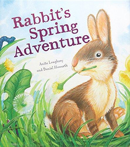9781848358164: Animal Seasons: Rabbit's Spring Adventure