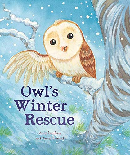 9781848358751: Animal Seasons: Owl's Winter Rescue