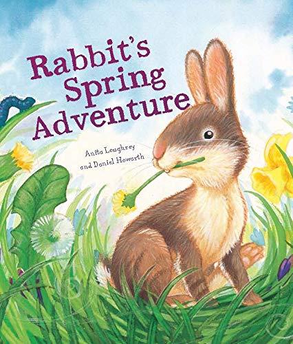 9781848358768: Rabbit's Spring Adventure (Animal Seasons)