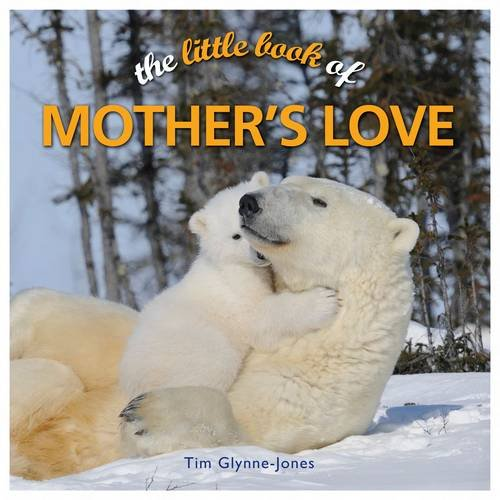 9781848377615: Little Book of Mother's Love