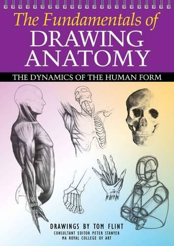 9781848378193: The Fundamentals of Drawing Anatomy. Tom Flint, Peter Stanyer