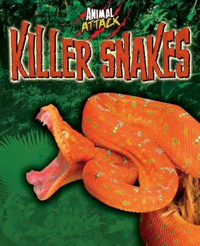 9781848379497: Killer Snakes (Animal Attack)