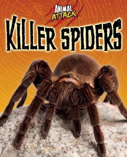 Killer Spiders (Animal Attacks (Arcturus))