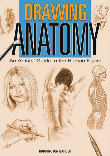 Drawing Anatomy: An Artists' Guide to the Human Figure: Barber, Barrington