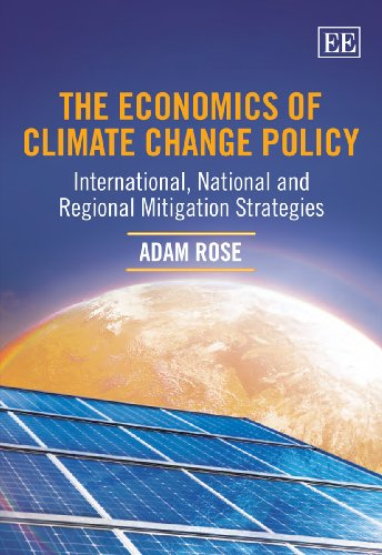 The Economics Of Climate Change Policy: International, National And Regional Mitigation Strategies