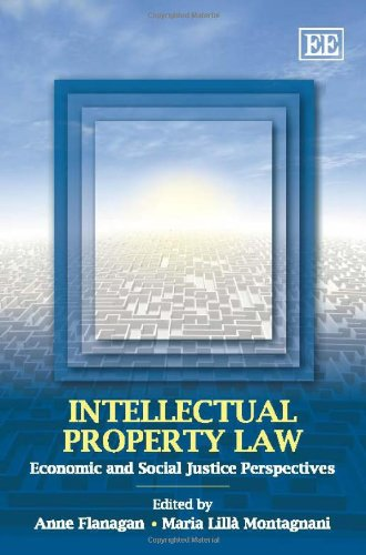 9781848446274: Intellectual Property Law: Economic and Social Justice Perspectives