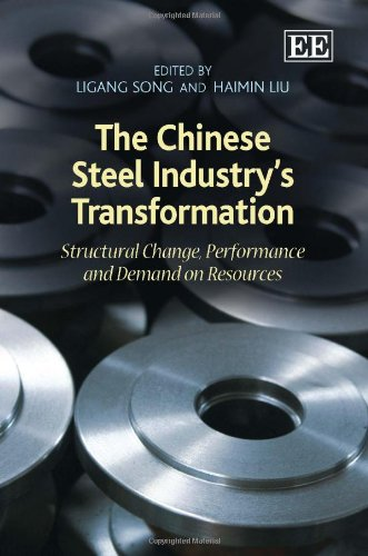 9781848446588: The Chinese Steel Industry's Transformation: Structural Change, Performance and Demand on Resources
