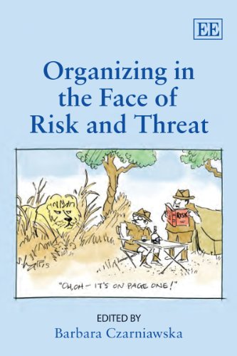 9781848447998: Organizing in the Face of Risk and Threat