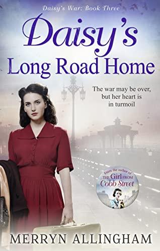 9781848453982: Daisy's Long Road Home