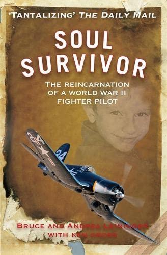 9781848502192: Soul Survivor: The Reincarnation of a World War II Fighter Pilot