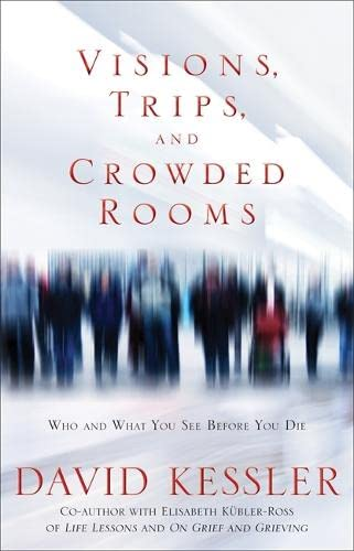 9781848503380: Visions, Trips, and Crowded Rooms: Who and What You See Before You Die