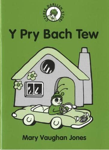 9781848517080: Cyfres Darllen Stori: 2. Pry Bach Tew, Y (Welsh Edition)