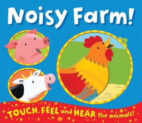 9781848571938: Noisy Farm!
