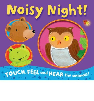 9781848573543: Noisy Night! (Touch, Feel, and Hear the animals!)