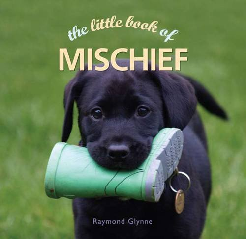 Little Book of Mischief: Glynne, Raymond