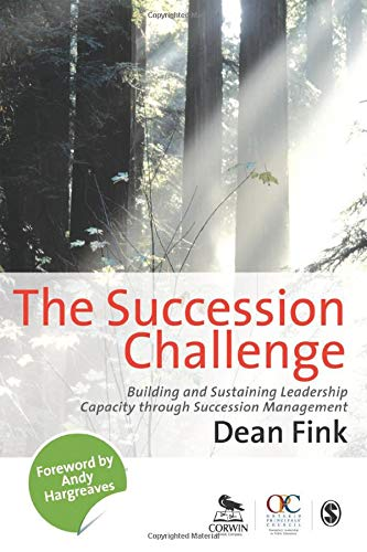9781848606968: The Succession Challenge: Building and Sustaining Leadership Capacity Through Succession Management