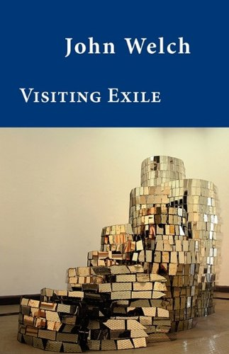 9781848610767: Visiting Exile