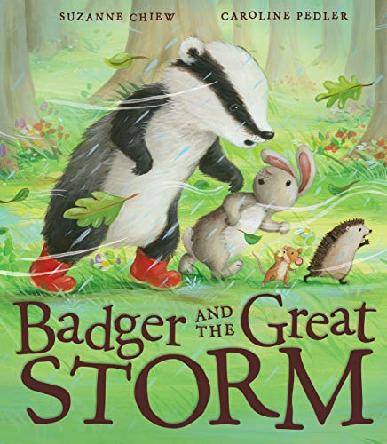 9781848690462: Badger and the Great Storm
