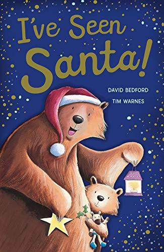 9781848693357: I've Seen Santa