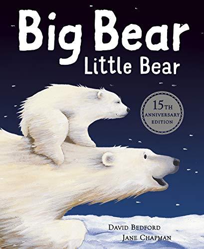 9781848693555: Big Bear Little Bear