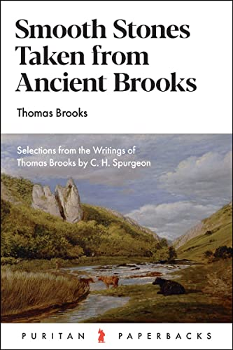 9781848711136: Smooth Stones taken from Ancient Brooks (Puritan Paperbacks)