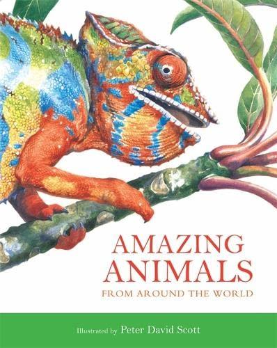 9781848770058: Amazing Animals