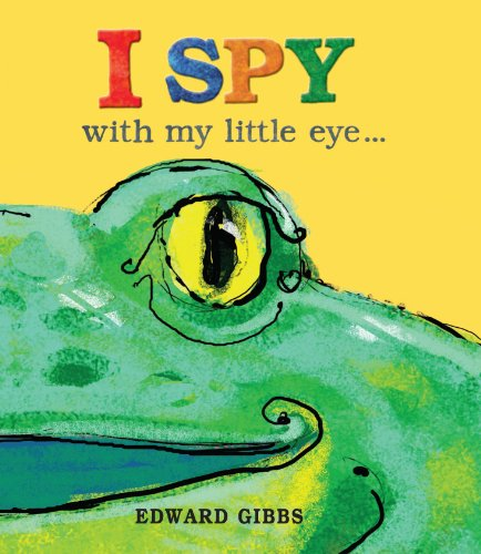 9781848771970: I Spy With My Little Eye