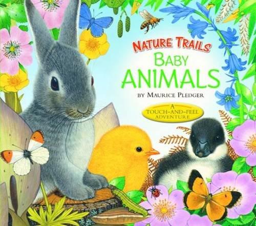 9781848773387: Nature Trails: Baby Animals