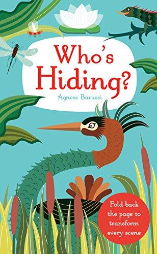 9781848776043: Who's Hiding?