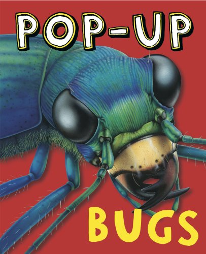 Pop-Up Bugs: Ruth Martin