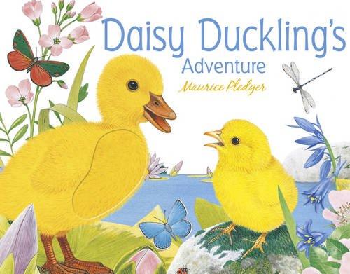 9781848777101: Daisy Duckling's Adventure