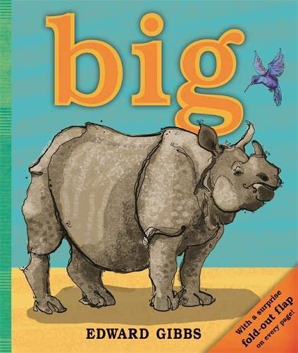 9781848777583: Big