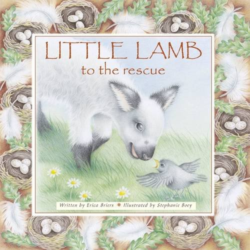 9781848779518: Little Lamb to the Rescue