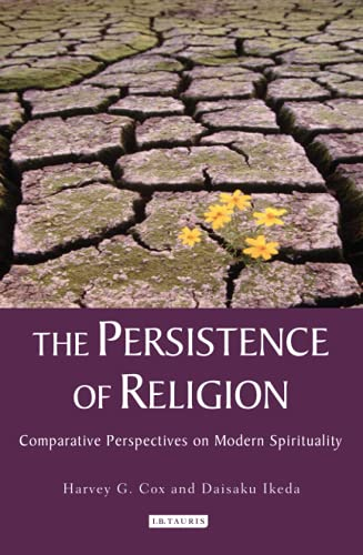 9781848851955: The Persistence of Religion: Comparitive Perspectives on Modern Spirituality