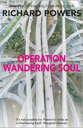 9781848871434: Operation Wandering Soul