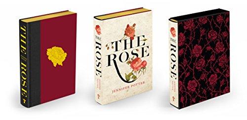 9781848871762: Rose