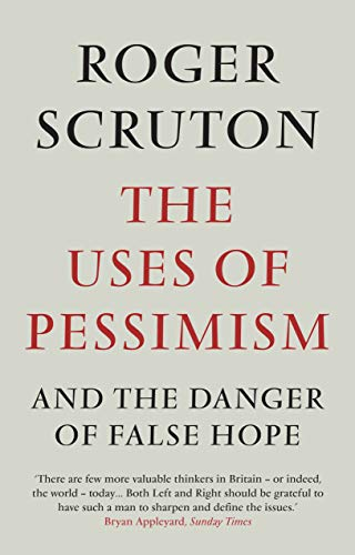 9781848872004: The Uses of Pessimism