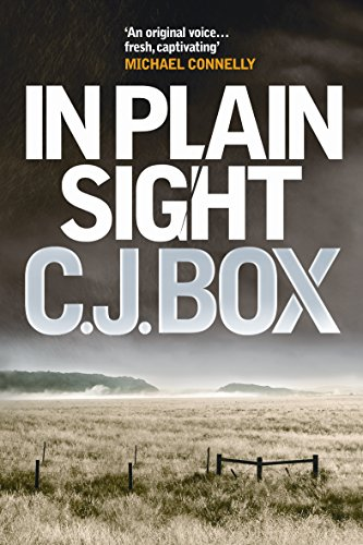 9781848878051: In Plain Sight (Joe Pickett)