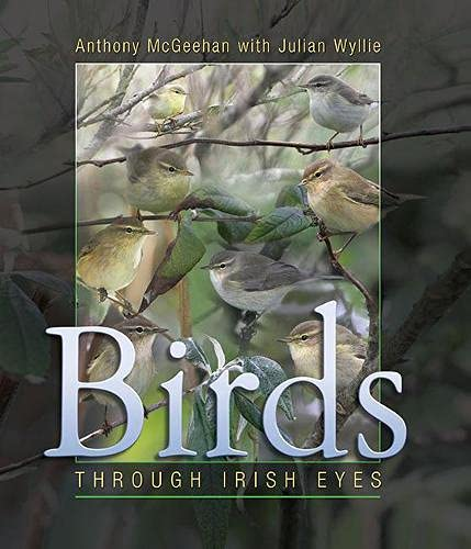 Birds: Through Irish Eyes: Julian Wyllie; Anthony McGeehan
