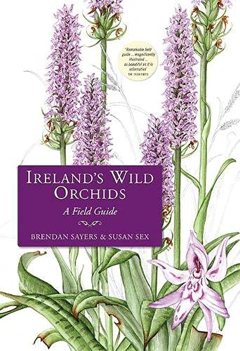 9781848891692: Ireland's Wild Orchids: A Field Guide