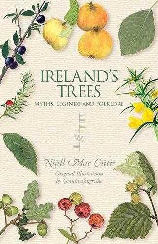 9781848892484: Ireland's Trees: Myths, Legends & Folklore