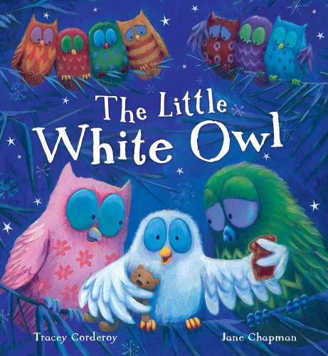 9781848950856: The Little White Owl