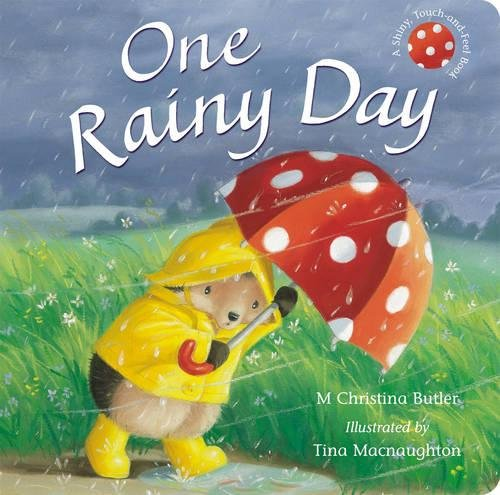 9781848952232: One Rainy Day