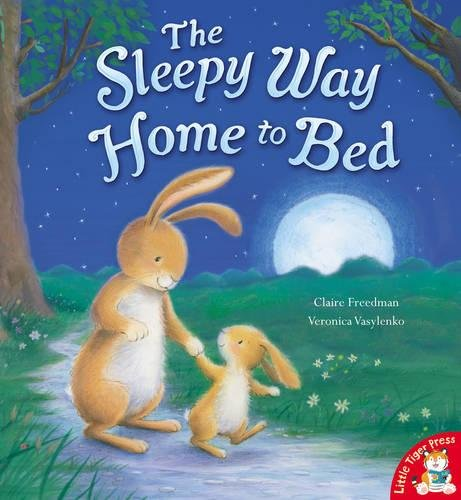 9781848952782: The Sleepy Way Home to Bed