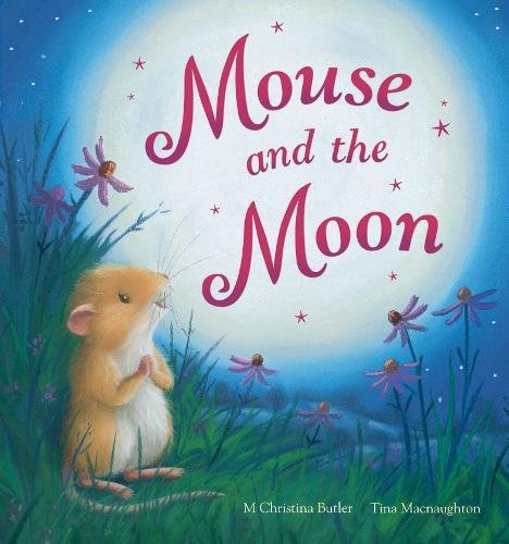 9781848953093: Mouse and the Moon